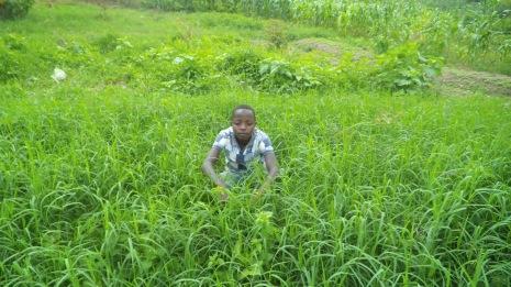 Emmanuel im Gras
