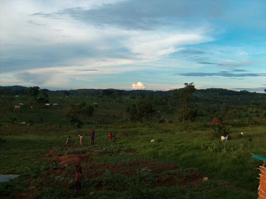 Das ist mein Lieblingsbild, weil es schön die Landschaft von Rwamwanja zeigt